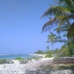 #3 food pic Caymans