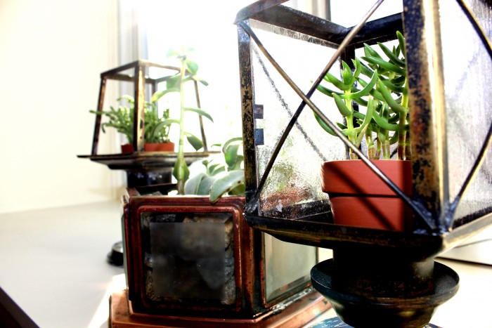 Light Fixture Planters