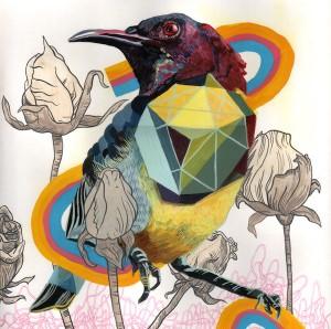 Endangered Bird #55a