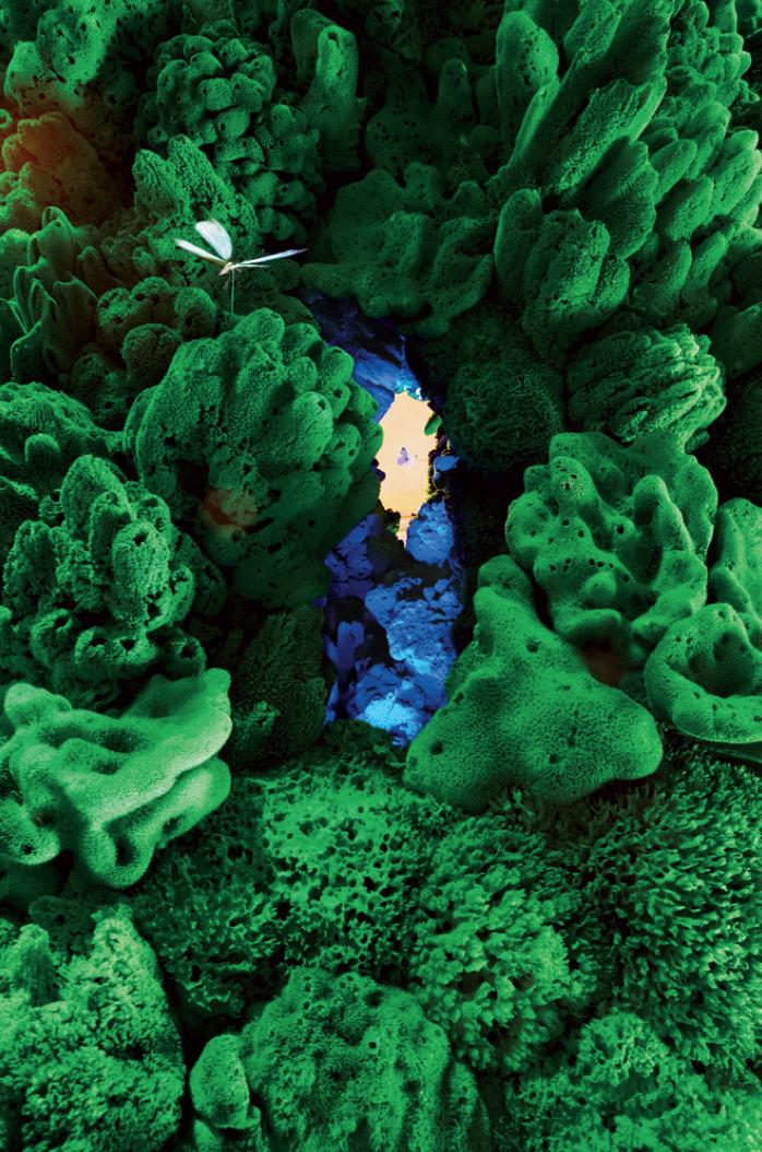 ingo-maurer-biotope-3